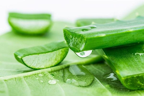 cách trị tụt nướu răng tại nhà, cách chữa tụt lợi tại nhà