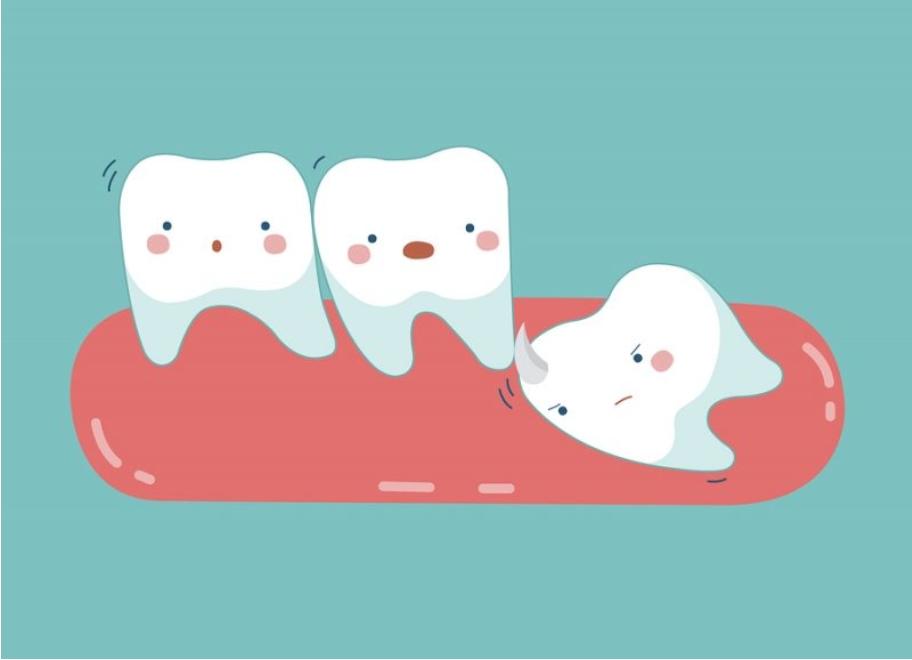 trẻ rụng răng lâu mọc, răng cửa trẻ rụng bao lâu thì mọc