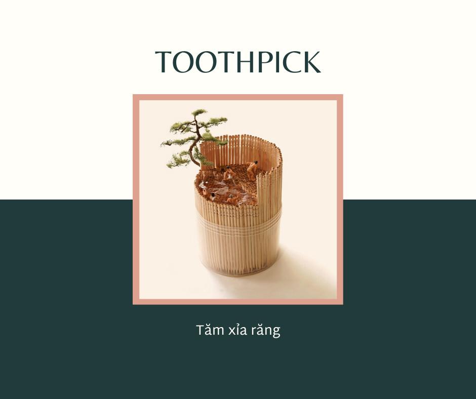 tăm xỉa răng tiếng anh, tăm xỉa răng tiếng anh là gì, tăm xỉa răng trong tiếng anh, cây tăm xỉa răng tiếng anh là gì, tăm xỉa răng dịch tiếng anh