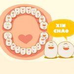 Tuổi mọc răng sữa của trẻ | Lộ trình quan trọng ba mẹ chớ bỏ qua!