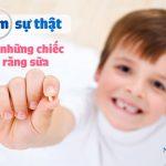 [Một vé về tuổi thơ] Tìm sự thật những chiếc răng sữa đổi cho chuột hay bà tiên mang răng cũ đi trả lại răng mới?
