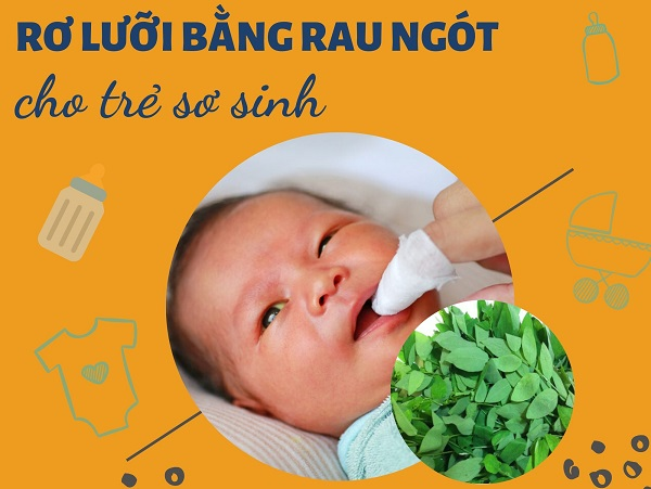 rơ lưỡi bằng rau ngót, cách rơ lưỡi bằng rau ngót, cách rơ lưỡi bằng rau ngót cho trẻ sơ sinh, rơ lưỡi bằng nước rau ngót, đánh rơ lưỡi bằng rau ngót, rơ lưỡi cho trẻ bằng rau ngót, rơ lưỡi cho bé bằng rau ngót, cách đánh rơ lưỡi bằng rau ngót, rơ lưỡi trẻ sơ sinh bằng rau ngót, rơ lưỡi cho trẻ sơ sinh bằng rau ngót, rơ lưỡi cho trẻ sơ sinh bằng nước rau ngót, rơ lưỡi trẻ sơ sinh bằng rau ngót, rơ lưỡi bằng nước rau ngót, cách rơ lưỡi cho bé bằng rau ngót